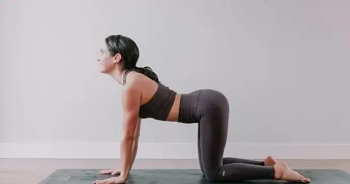 一套灵活脊柱的瑜伽体式,改善体态,越练越有气质