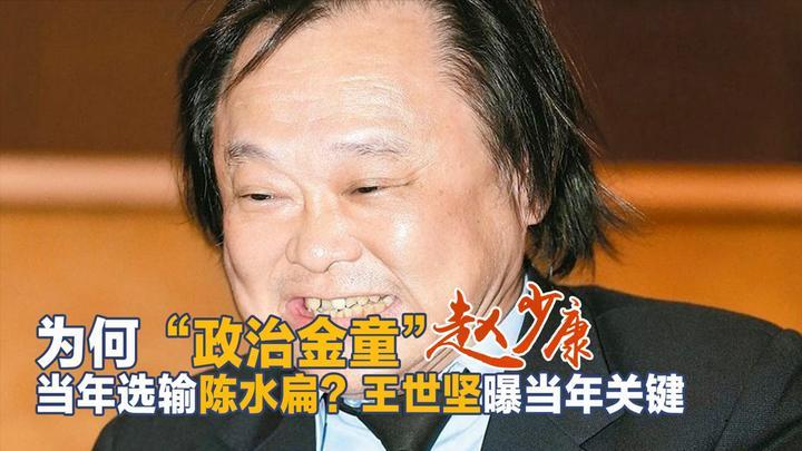 """赵少康参选为何会败给陈水扁?王世坚:最大的原因就是""""他自己"""""""