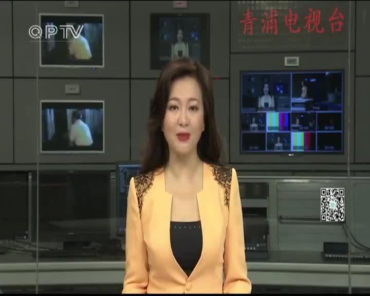 金泽:艺术名家书画教学 开展防电信诈骗宣传