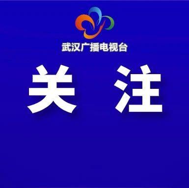 """武汉要求领导干部做到""""五为"""""""
