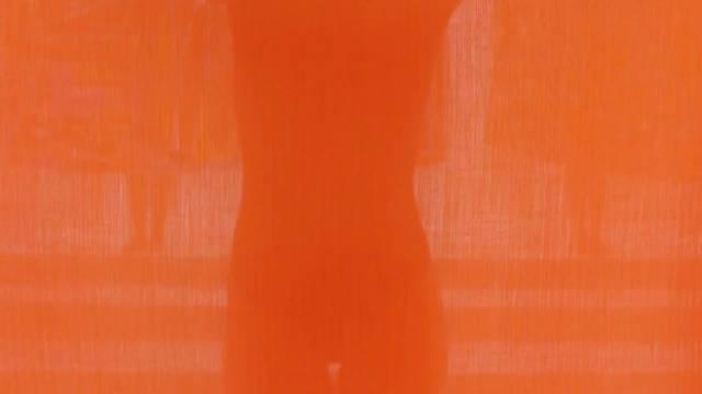 丝巾,是女性优雅的标志 与爱马仕共同创造有趣的乐园