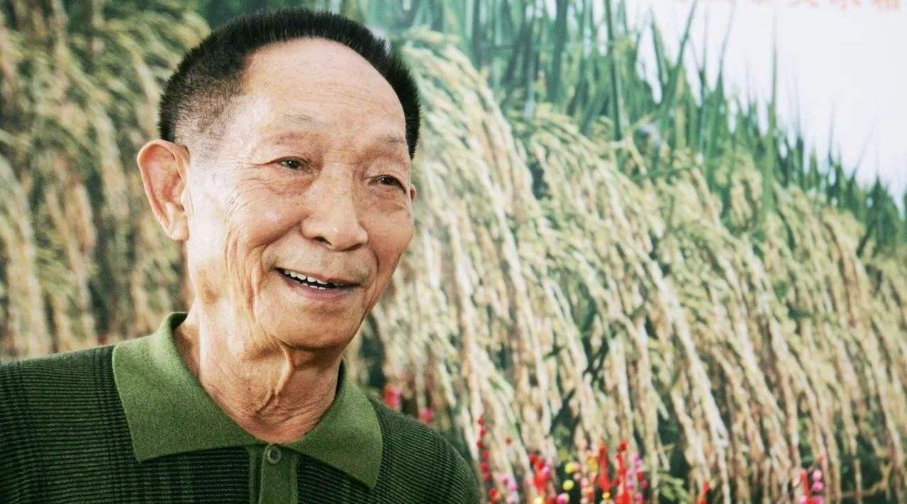 """""""90""""后的袁隆平是中国最知名的杂交水稻专家……"""