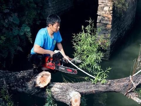 保护红旗渠,护渠人一直在行动,8月4日清理渠内树木残枝纪实