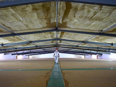 国家政策性粮食仓储管理征求意见稿出台 粮食损耗设定标准