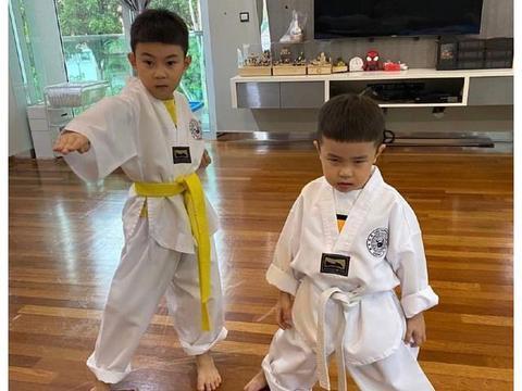 有爱!羽坛名将李宗伟晒儿子萌照,两个儿子穿上跆拳道服充满杀气