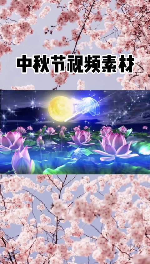 中秋节视频素材背景