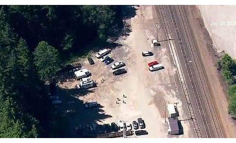 美国少女车抛锚又迷路,树林中失踪8天,靠食浆果喝溪水幸存