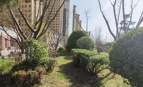 甘肃庆阳市西峰区正洋,凤凰大井小区是一个高端花园社区