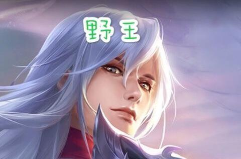 王者荣耀:为什么游戏只有野王和辅王呢,那其他位置就只能混吗