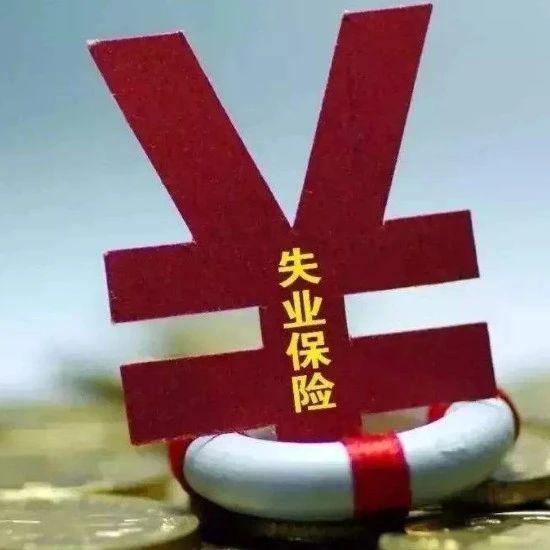 失业保险金!楚雄市按1350元/月发放,其余9县按1215元/月发放