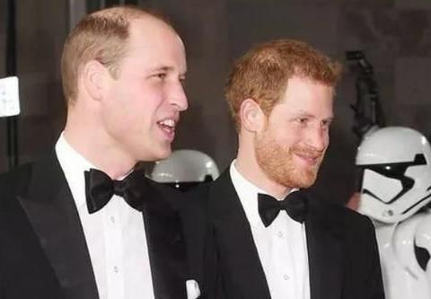专家揭露王室不和真相:哈里怨恨威廉在民众眼中是理智的未来国王