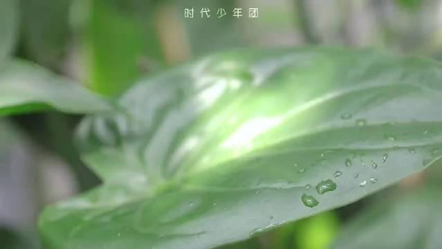 时代少年团 回到夏天花絮 马嘉祺、丁程鑫、宋亚轩、刘耀文、张真