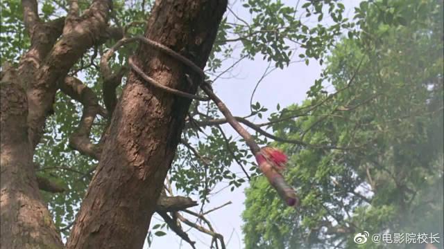 东方不败:令狐冲看到树上的鞭子……