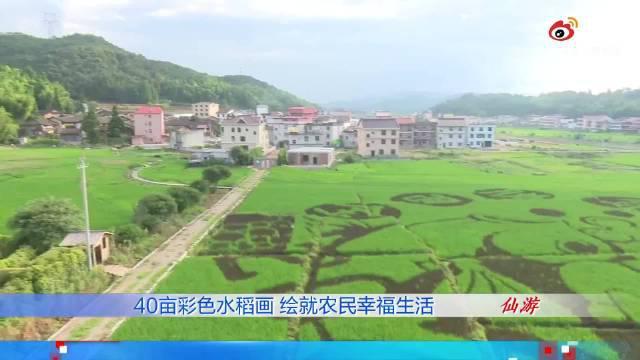 美呆了!40亩稻田绘画巨幅彩色水稻画,绘就农民幸福生活