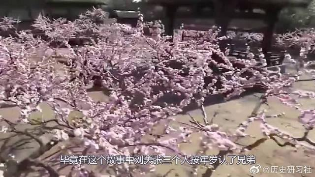"""刘关张""""桃园三结义"""",一生没有违背!那他们的誓词是什么?"""