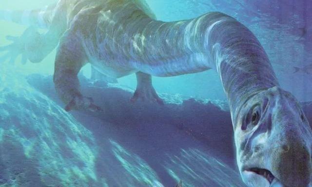 三叠纪的长脖怪兽,脖子3米长,鼻孔朝天牙弯曲,百年之谜被解开