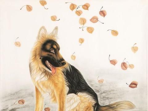 生肖狗:12个不同月,12种不同命,自己看看你是命好还是命苦?