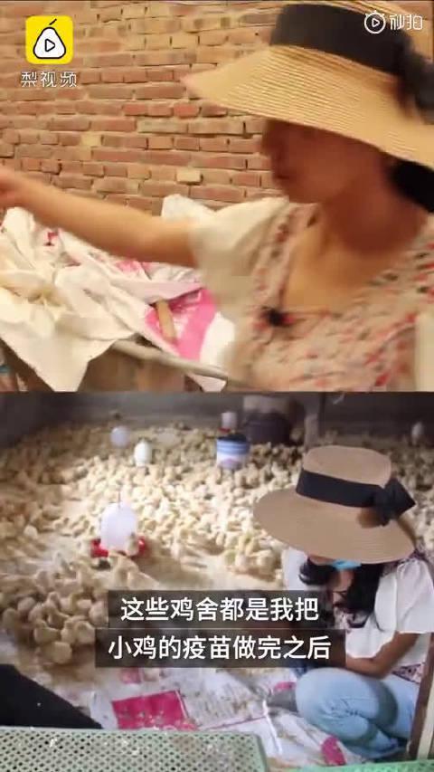 女子二年级辍学靠养鸡年入10万,网上自学辅导孩子
