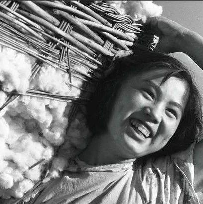 德州印记④丨要发家,种棉花