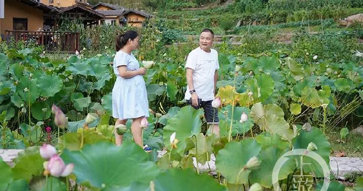 游客越来越多了 中益乡及时对农家乐规范管理提挡升级