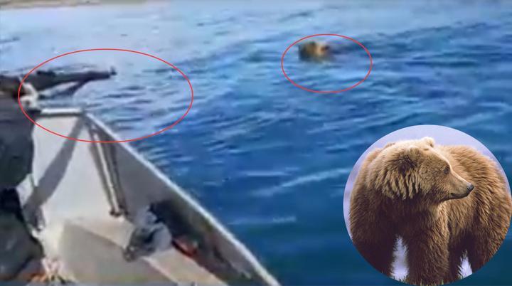 """实拍:贝加尔湖熊""""追杀""""猎人 战斗民族船上举枪射击 一枪毙命!"""