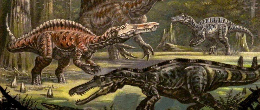 四张骨骼线图,带你了解恐龙界真正会游泳的水中霸主