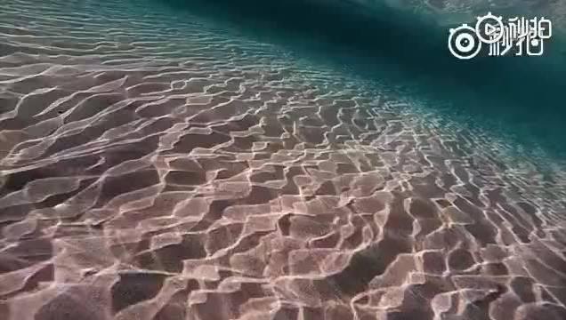 潜水和冲浪,配上空灵的音乐。心好像也跟着飘远,仿佛身临其境