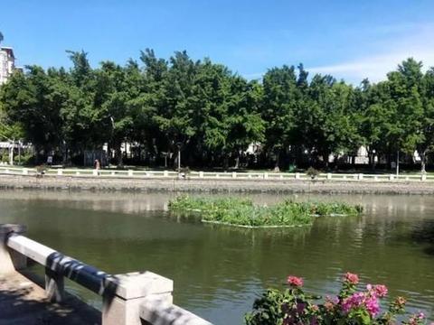 汕头市区龙湖沟等水体降低水位细排查,提质治污净水体