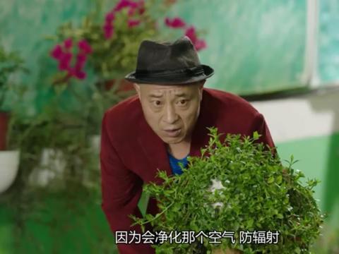 赵四跟踪买花人上演荒野大飙车,三轮跑的可真快哈哈哈哈