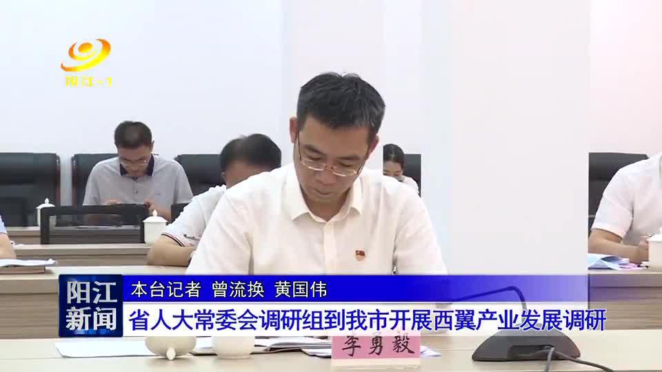 省人大常委会调研组到阳江市开展西翼产业发展调研