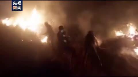 秘鲁南部森林发生火灾 致8死40伤