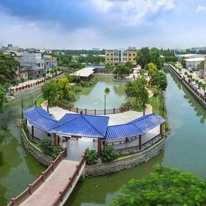 【基层党建 江门答卷】江门这里亭台绿树、河道环绕......太美了!幸福感爆棚!
