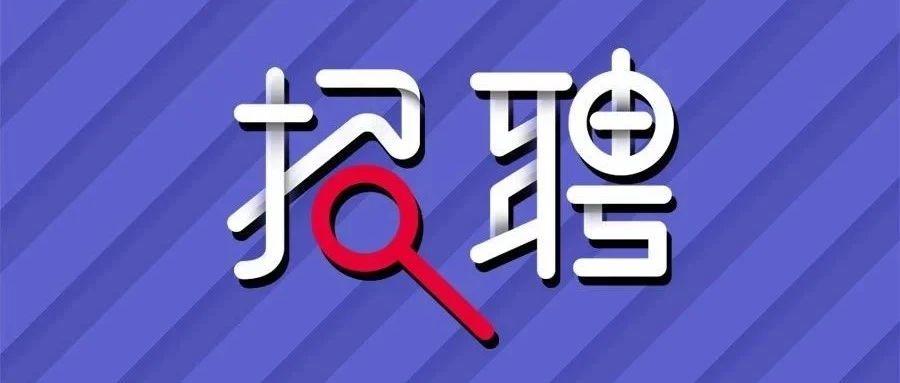 长春市两地公开招聘教师!
