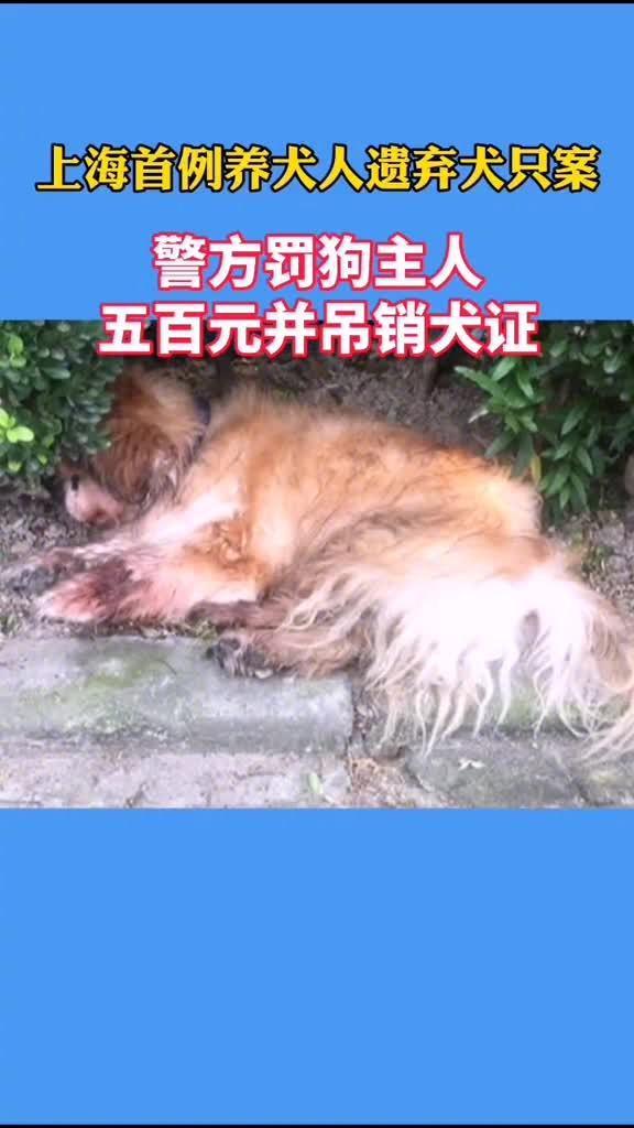 家犬被主人在酷暑天遗弃在花园角落……