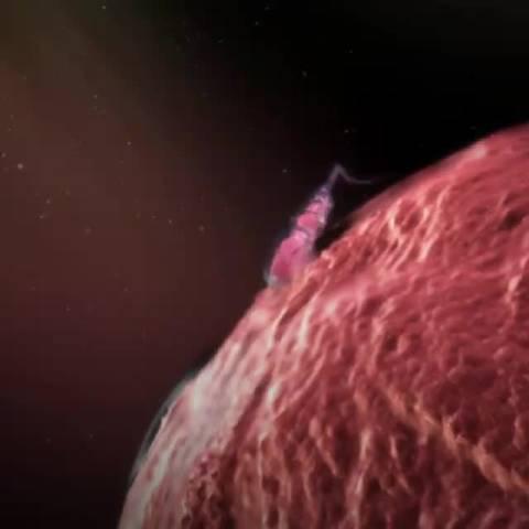 关于生育的一些数据 男性基本上终身都能产生精子……