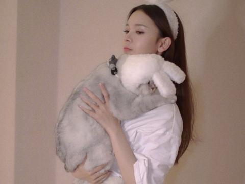 女星养宠物,陈瑶的太可爱,彭小苒的太丑,哈妮克孜的和本人好像
