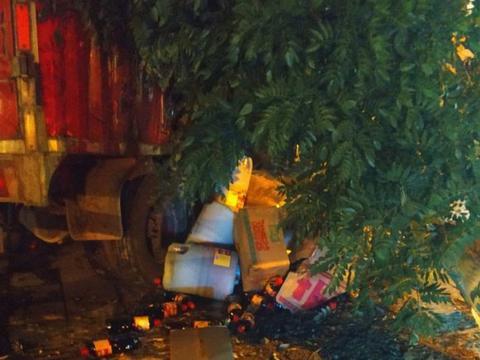突发!招远街头一货车冲入人行道撞断大树,现场狼藉一片...