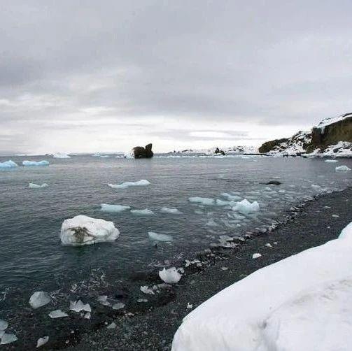 外媒:加拿大最后一个完整北极冰架坍塌 全球变暖再发信号