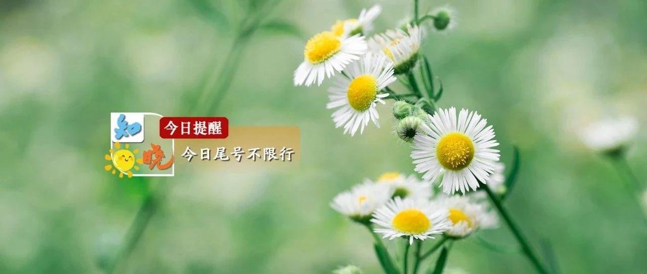知晓 | 22~34℃,280万张北京消费券来了!8日起,北京高考录取结果陆续可查!冬奥社区主题曲、社区标识发布!