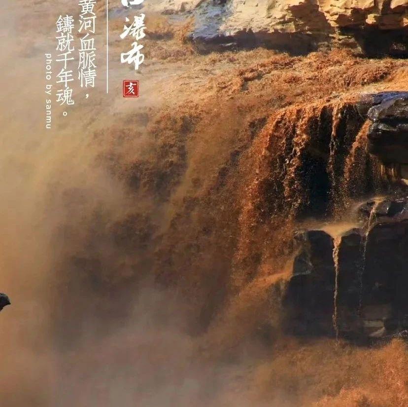明日起开放!山西黄河壶口瀑布景区恢复开放通告