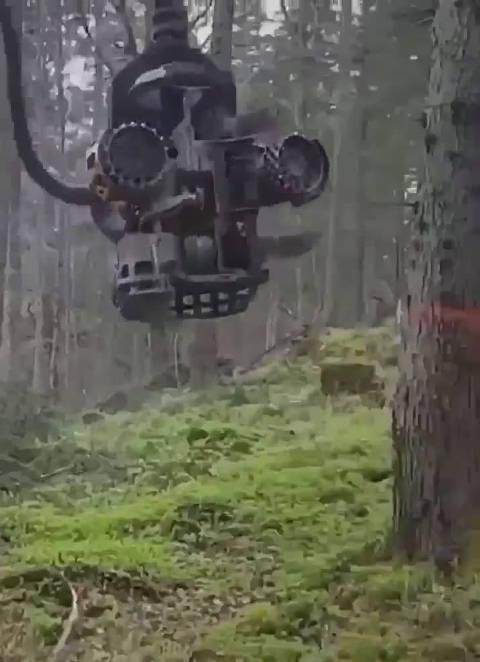 各种机器伐树,科技的力量!