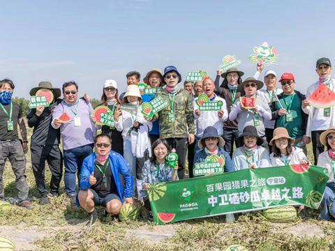 牵手第13个年头  百果园助力中卫硒砂瓜产业发展