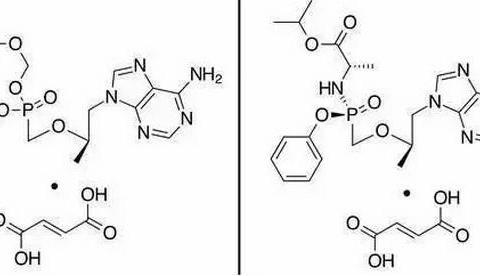 乙肝替诺福韦艾拉酚胺试验,Plase2临床启动,面向两个年龄层