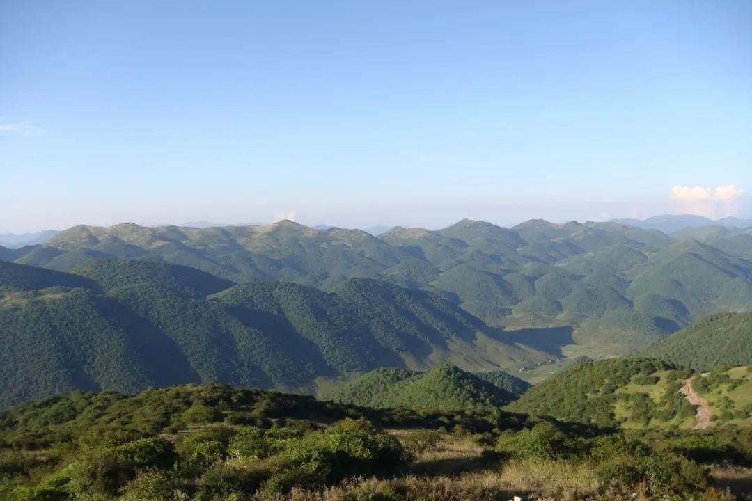 重庆海拔最高峰上有什么?