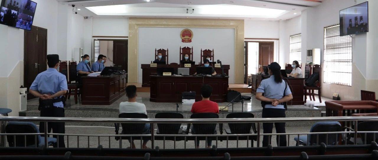 国家二级重点保护野生动物蛇雕被诱捕低价卖出,铁山港区人民法院开审!