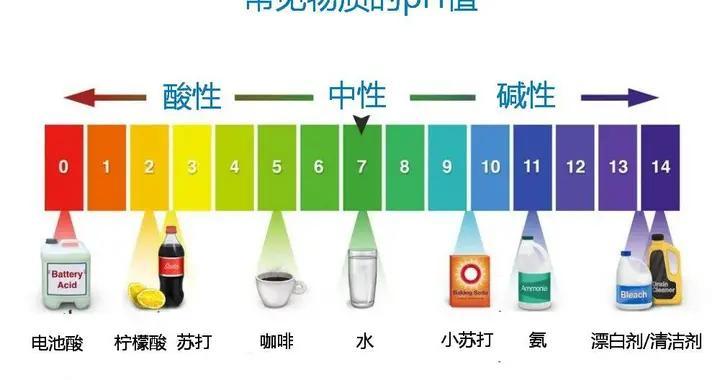 pH值与皮肤健康