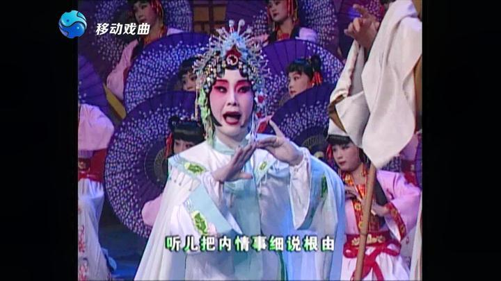 豫剧 虎美玲 王凤琴《风雨情缘》选段