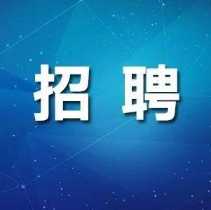 含事业单位、教师岗位!黑龙江省最新招聘信息来了
