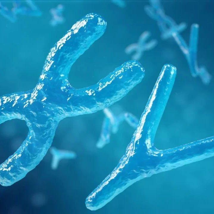 首发 | 获近亿元B+轮融资,累计检测胚胎超180000个,这家公司如何挖掘千亿级生殖遗传市场?