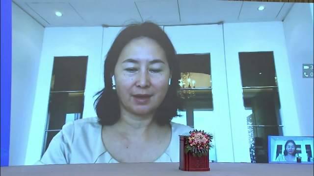 信德集团行政主席何超琼:在网络上推广湖北丰富的旅游资源